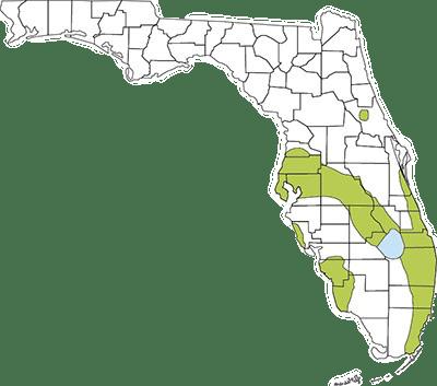 Cane toad range map