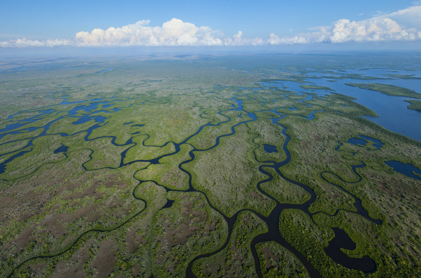 Everglades from above