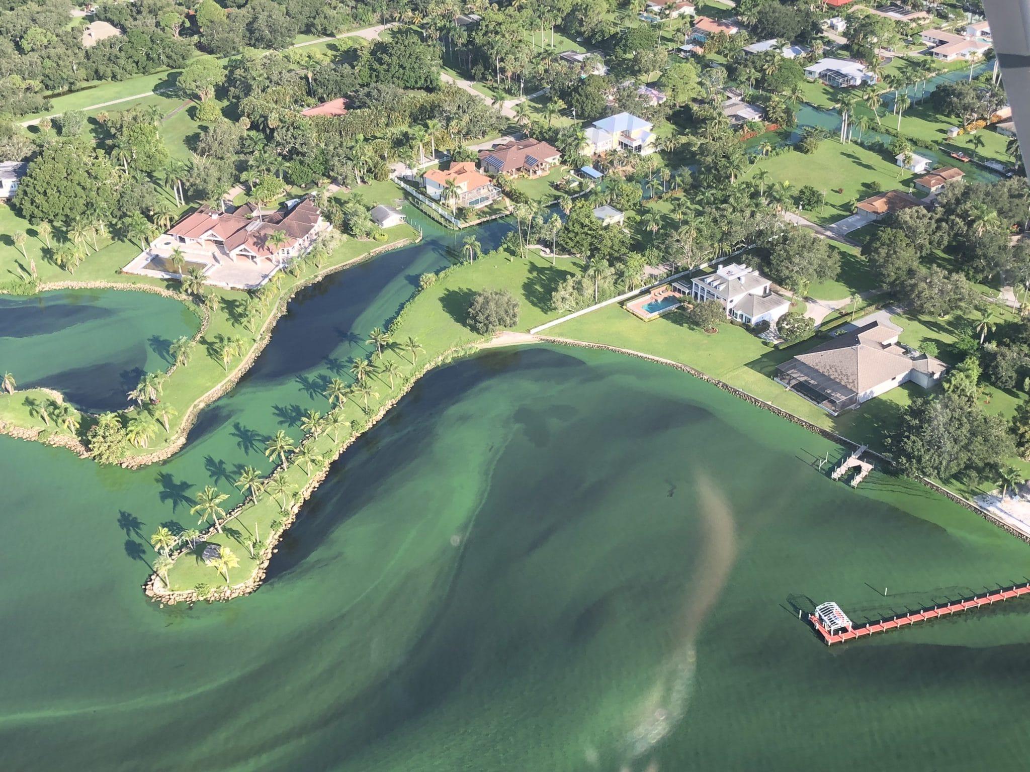 Aerial view showing algae blooms in the water