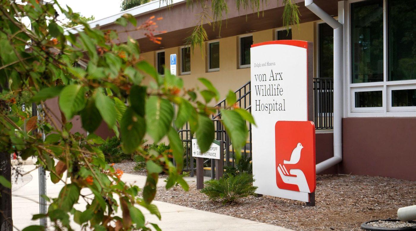 Wildlife Hospital Front Door