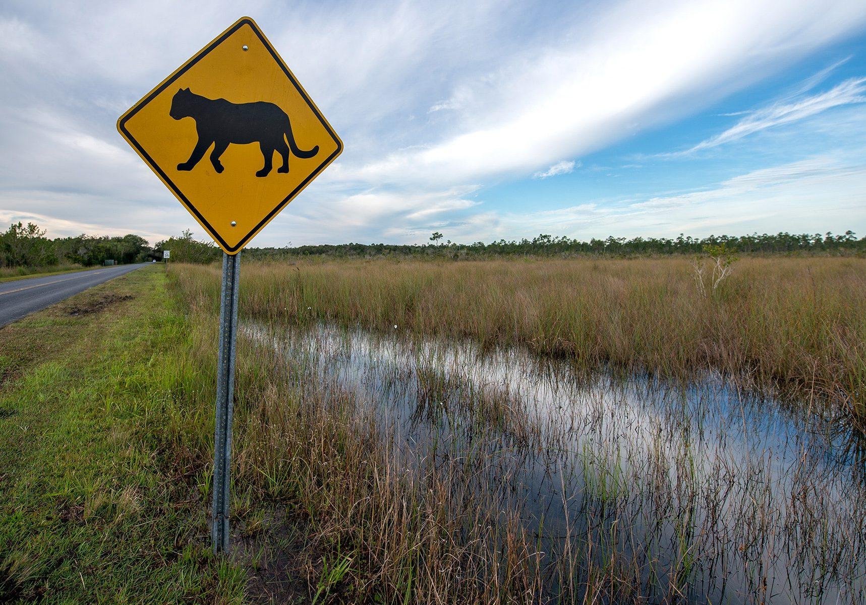 Panther Crossing Sign - Our Work